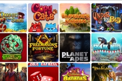 Ridika Casino Slot Games