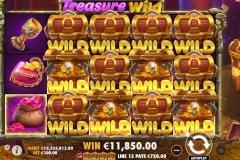 Treasure-Wild-6858107-2