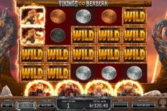 Vigings Go Berzerk Slot Wild Symbol