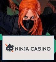 Ninja online-casino