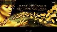 Midaur Casino Offer