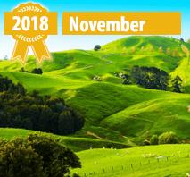 New Online Casinos November 2018