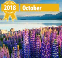 New Online Casinos October 2018