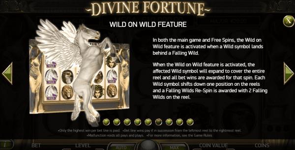 Wild on Wild Bonus Divine Fortune