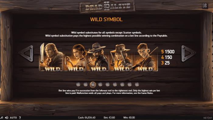 Wild symbols of the Dead or Alive 2 slot