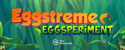 WestCasino Invites You To Take Part In Its Eggstreme Eggsperiment