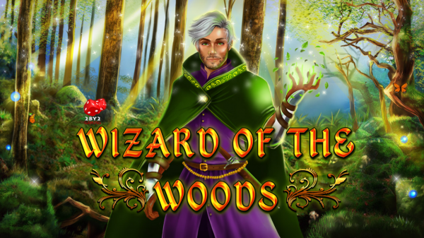 Wizard of the Woods is developed by 2by2Gaming