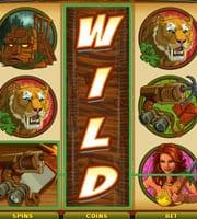 Slots With Wilds Symbols