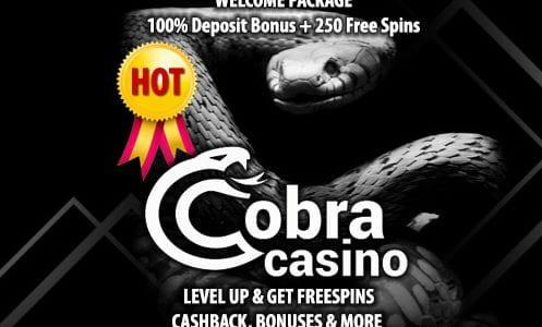 Cobra Casino Welcome Package