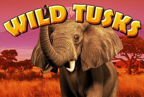 Wild Tusks Slot