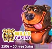 Will's Casino Box Banner