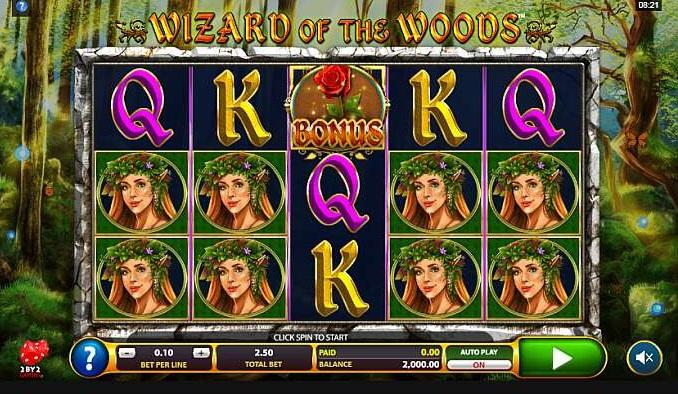Wizard of the Woods RTP: This intriguing slot game has an RTP of 96.02% and lets you bet between $0.20 and $25 per spin.