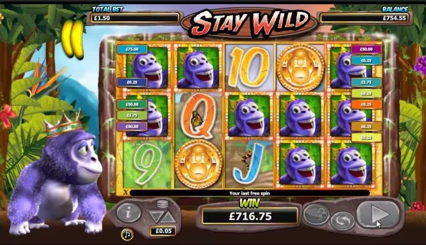 Gorilla Go Wild Paylines