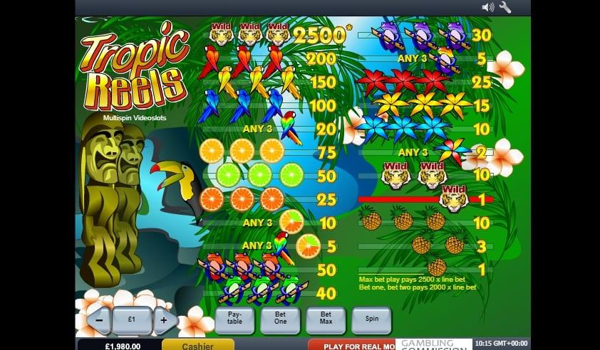 Tropic Reels Paytable: You get 10x your initial bet for scoring 3 pineapples or blue flowers. You will be awarded 15x your bet for landing 3 yellow flowers and 25x for 3 red flowers.