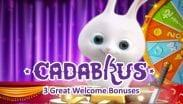 Cadabrus Casinos