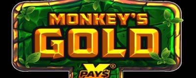 Nolimit City's Monkey's Gold xPays Game Is Now Live At Casoo Casino