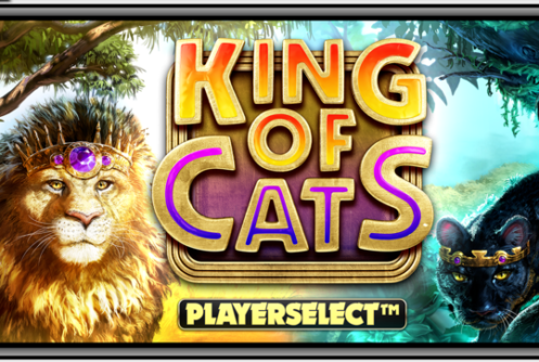 King of Cats Slot Mobile Play