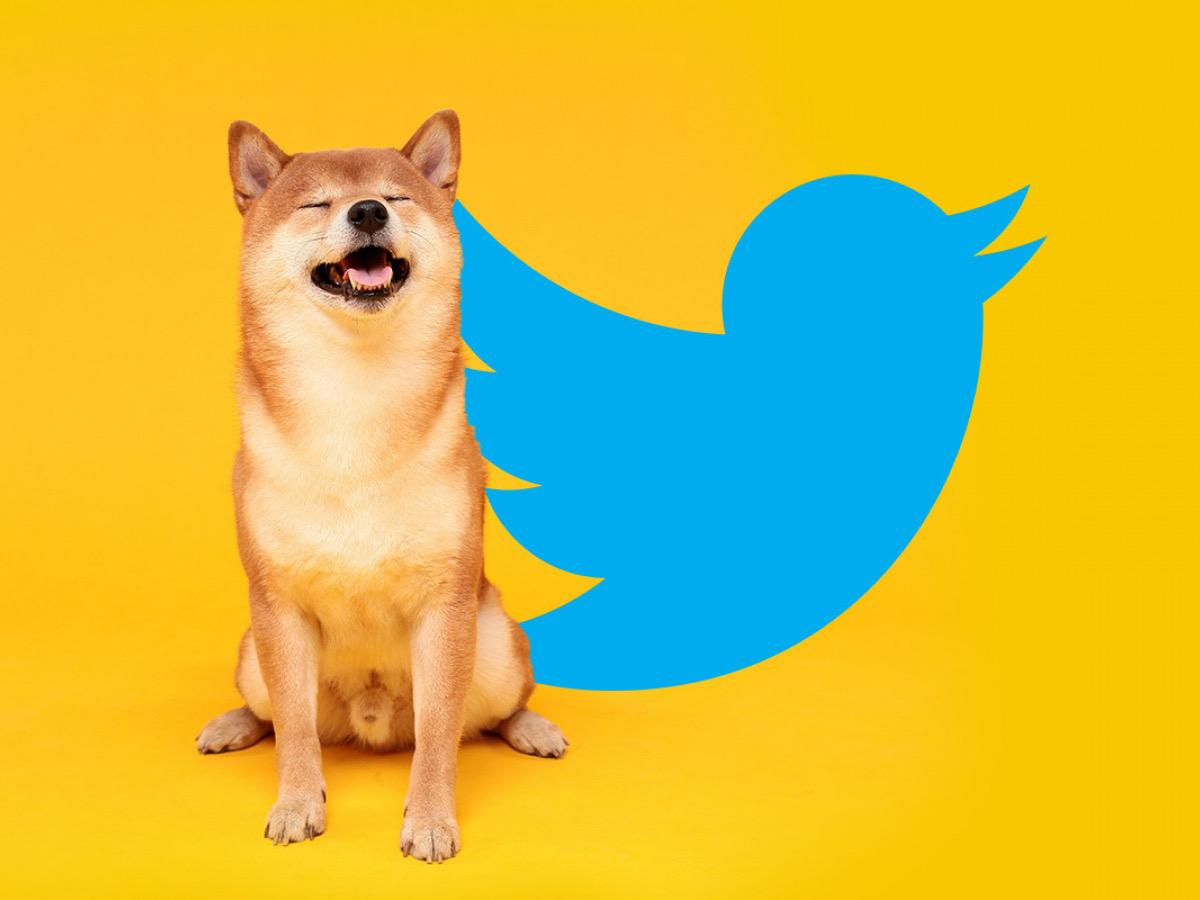 Shiba Jumps By 15 Percent After a Musk Tweet