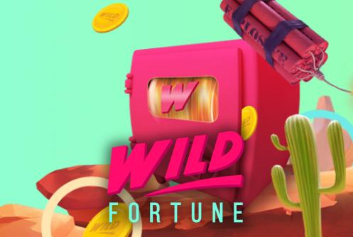 Wild Fortune Casino Welcome Bonus