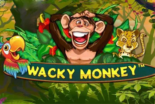 Wacky Monkey Slot