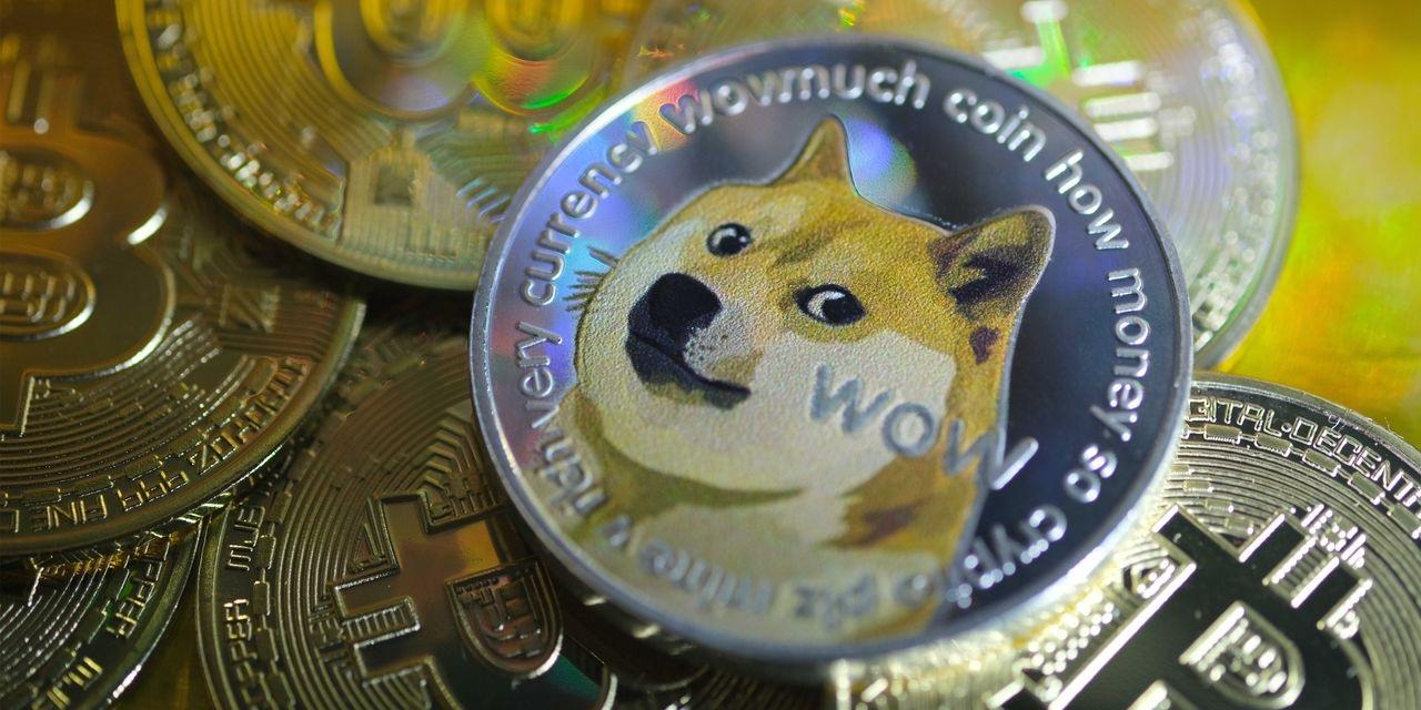 Musk's Massive Wealth Converted Into DOGE